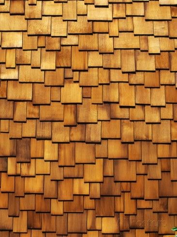 Wood Shingle Siding Photographic Print By Mark E Gibson