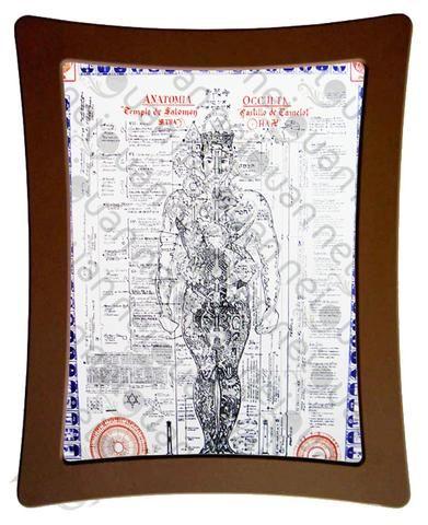 Póster de la anatomía oculta