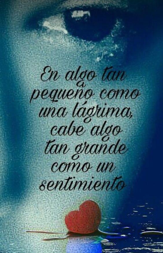 ###Lágrimas, lágrimas y...### - Página 2 1e3438657d21900cf5195790362278d7