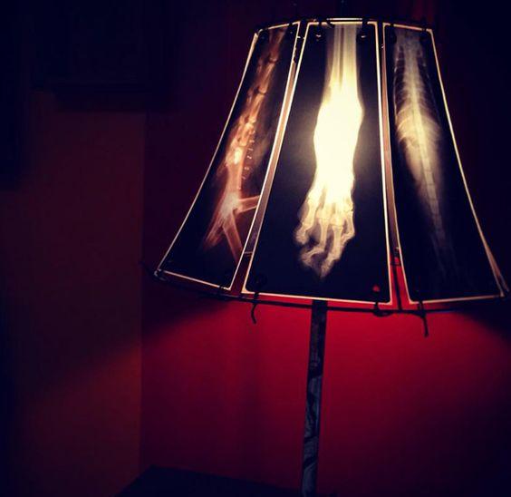 animal-x-ray-lamp-shade-veterinary-oncologist-spike-vain-7 ...