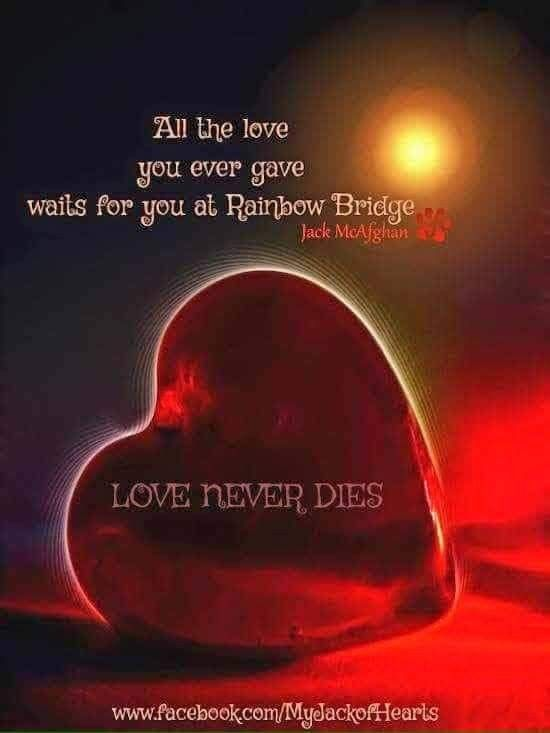 Pin By Inner Cove On My Beautiful Daughter Grandson Pet Loss Grief Rainbow Bridge Pet Remembrance