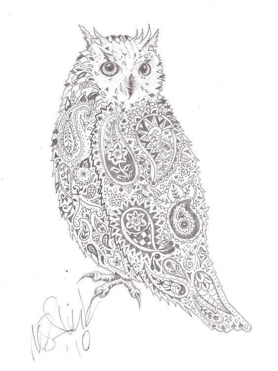 Little owl outline tattoo - photo#25