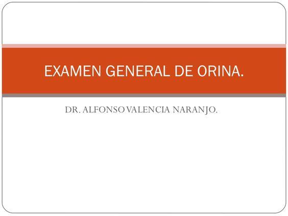 examen-general-de-orina-7242779 by Omar Rubalcava via Slideshare