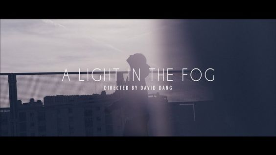 A light in the fog - David Dang
