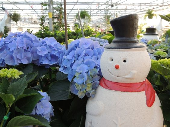 Highlights from out annual Beat the Winter Blues Wine and Cheese Party at Stanley's Greenhouse.