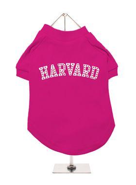 Legally Blonde ''HARVARD'' Dog T-Shirt | HAHAHA OMG YES