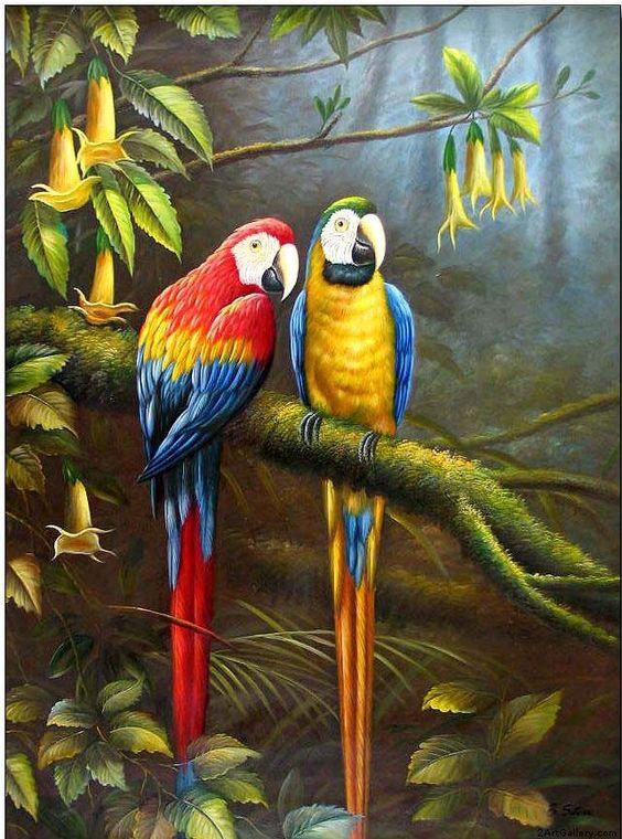 Famous Bird Artist   Animal oil painting, Jungle Parrots ...