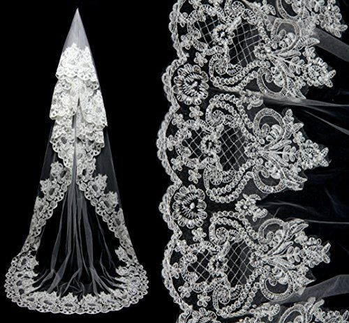 Factoryoffers Luxury Lace flowers Wedding Veil, 3 Meters Bridal Headpieces Comb Factoryoffers http://smile.amazon.com/dp/B0122UF6R2/ref=cm_sw_r_pi_dp_mo6Yvb0Z34WSK