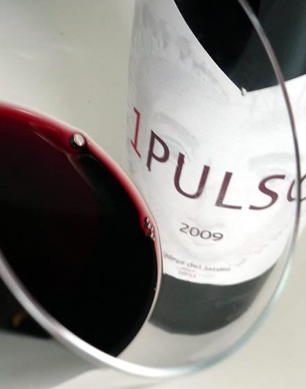 El fantástico vino 1 Pulso de la Familia Guelbenzu... de una inmejorable relación calidad precio.