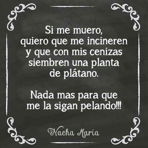 Pin By Paola Uribe On Un Poco De Humor Humor Person Memes