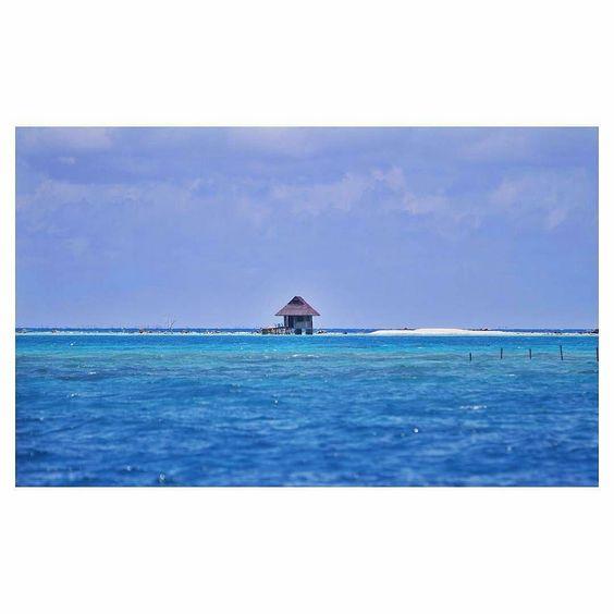 @jasonnaude  Remembering when I stayed in this hut built on a coral head for a week. #tahiti #ninamu #ninamuresort #tikehau #Regrann