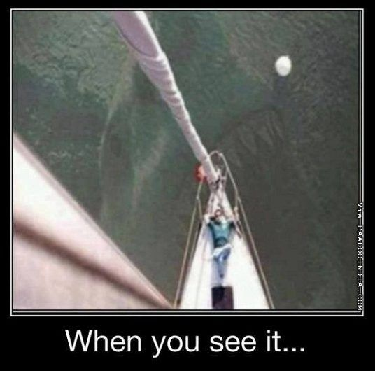 when you see it funny dirty - Google Search|. I have a love hate relationship with the ocean right now!
