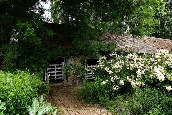rustic stable smothered in roses