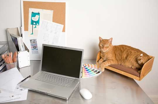 Don't get mad. Your furry one just wants to hang out while you compute. You should be flattered! Instead of punishing them for coming up, why not create a space at your desk just for them? The Kitt-in-Box, lets your pal sit with you without splaying out all over your stuff. DIYers can use an old wine box and wooden wall brackets to make a similar cat bed that attaches to the wall.  Via Apartment Therapy