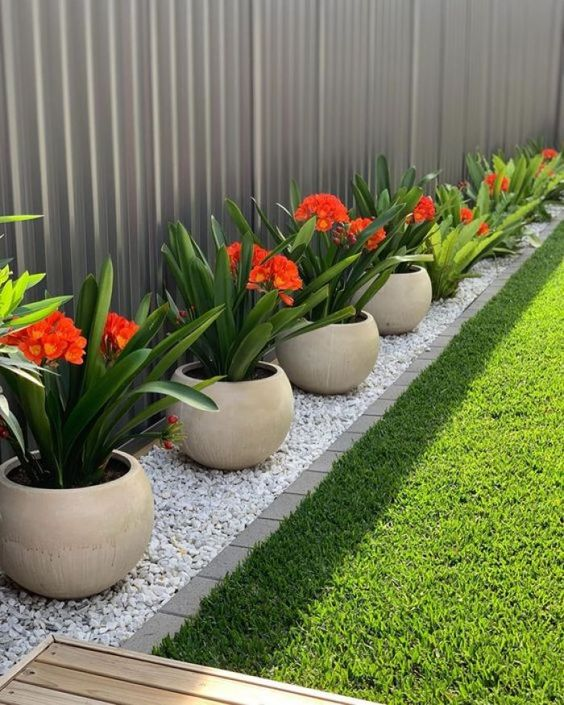 How to Decor front yard with Planters