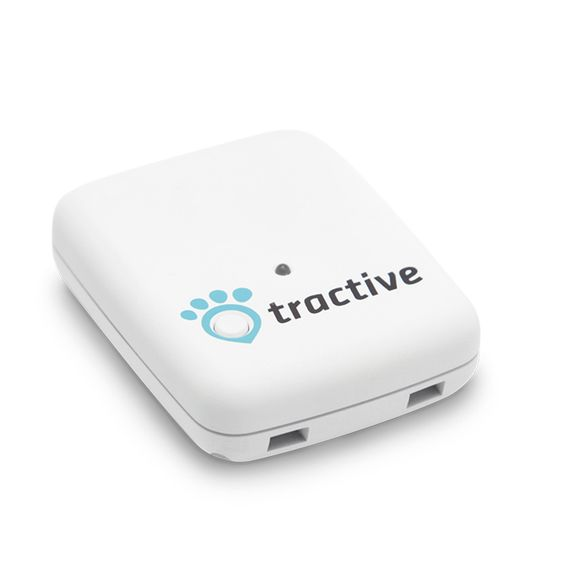 Gps Pet Tracker Need This For Reese Best Buy Sells Em