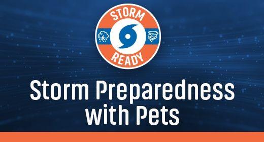 Storm Preparedness With Pets Guide In 2020 Storm Preparedness Hurricane Storm Storm