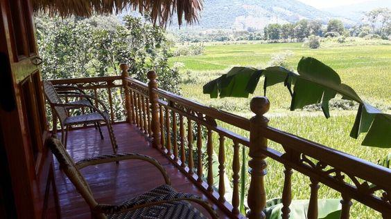 Terrace de vue sur les rizièrres chez l'habitant à Yen Son: