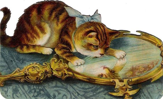 Oblaten Glanzbild scrap die cut chromo Katze  12,2cm  tiger cat mirror Spiegel: