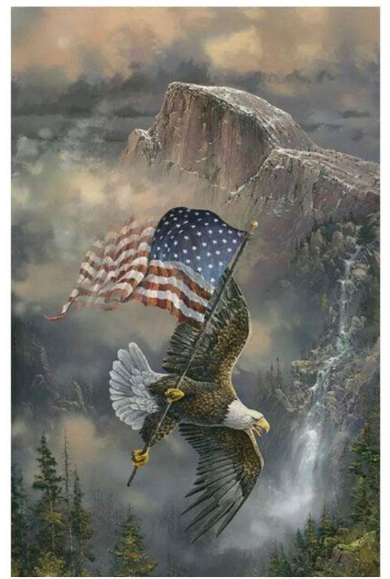 Pin On I Love America