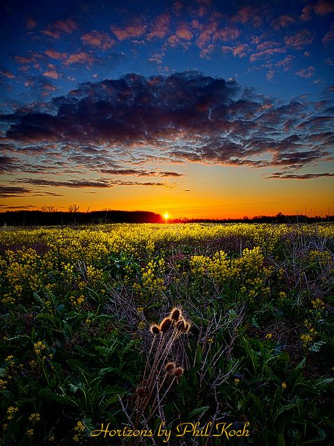 Remnants  by Phil~Koch on Flickr.