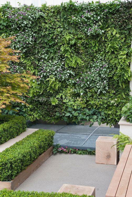 Vertical gardening. Living wall.
