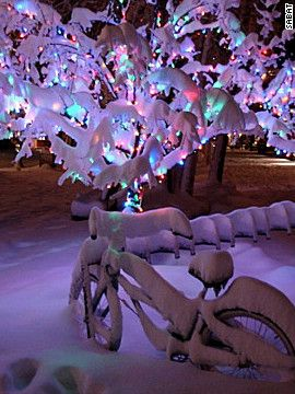Beautiful Christmas lights around the world - Naples, Florida is listed in this as well!