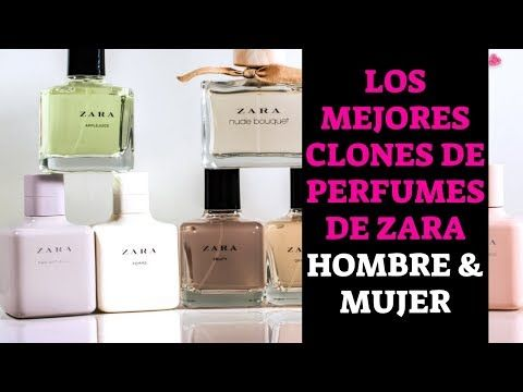 perfume zara gardenia equivalencias