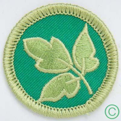 Demerit Badges - Poison Ivy