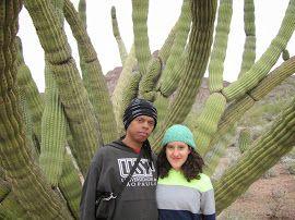 Um acampamento incrível, em um lugar lindo, com muito cacto, um céu lindo, muitas rochas, trilhas, e na melhor companhia do mundo.. Meu amor .. Organ Pipe Cactus National Monument em Ajo, AZ