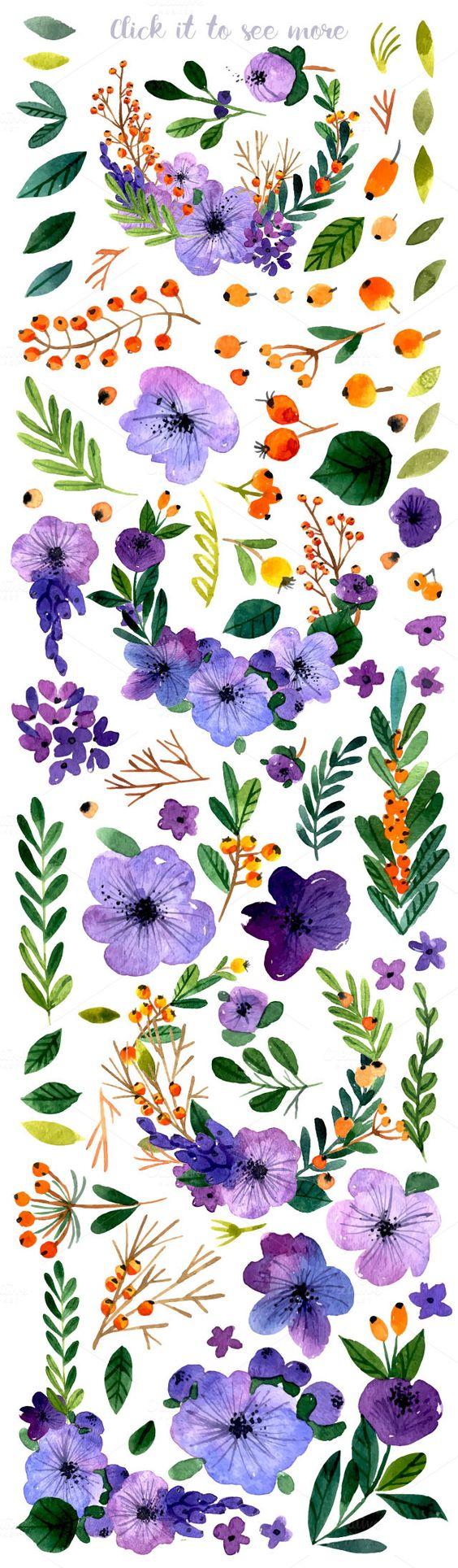 Romantic flower collection illustrations Лето pinterest