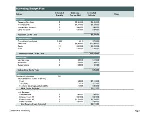 Budget plan for business