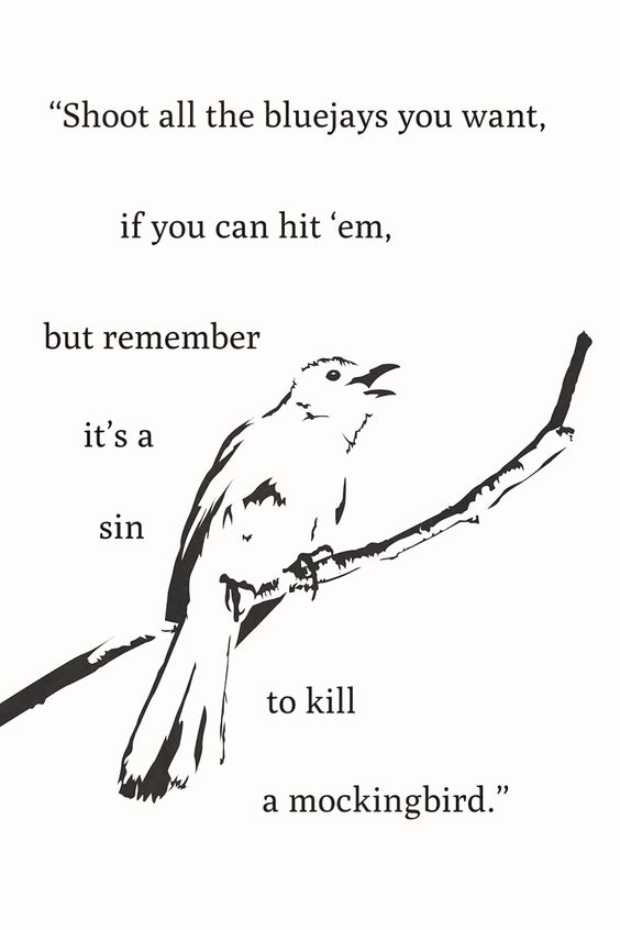 to kill a mockingbird novel pdf