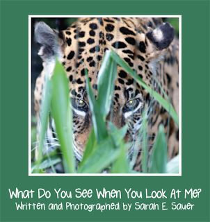 """Childrens Writers World: A Passion for Animals - Author Sarah E. Sauer shares the inspiration behind her new picture book """"What Do You See When You Look At Me?"""" http://www.childrenswritersworld.blogspot.com/2013/04/a-passion-for-animals.html"""