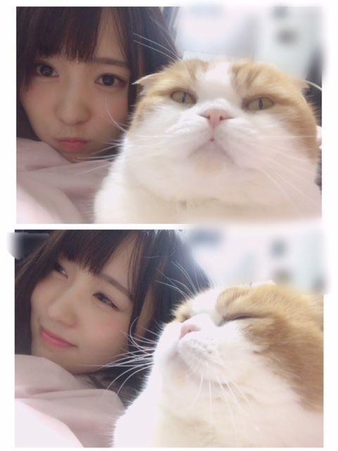 トム君と同じ表情をする菅井友香