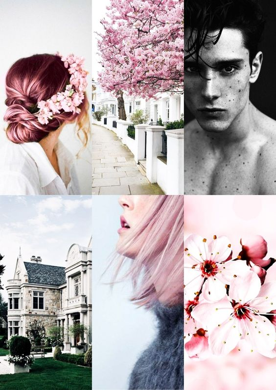 Aesthetics sinners of saint - vicious - new romance - new adult - cherry blossom