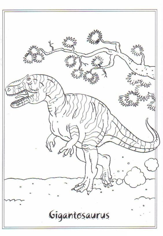 10 Stegosaurus Coloring Dinosaur Coloring Pages Dinosaur Coloring Coloring Pages