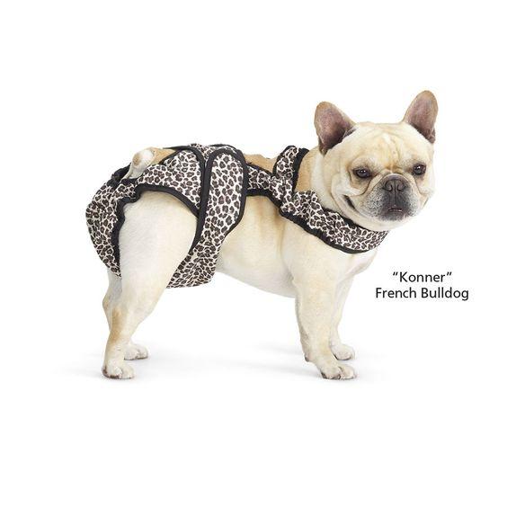 E Ed Da B C Bf C Ba D on Stay On Dog Diaper Pattern