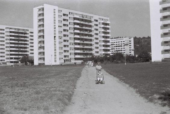 FOTO Grigorescu, așa cum nu-l știai. Cum arăta cartierul clujean cu jumătate de secol în urmă | www.actualdecluj.ro