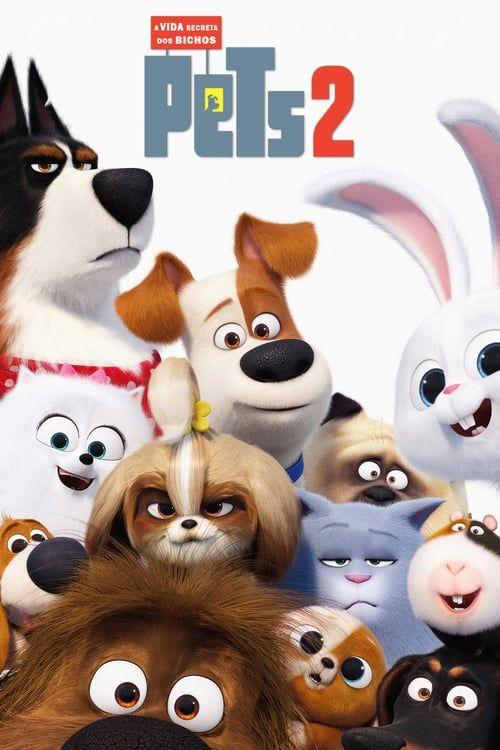 Guarda The Secret Life Of Pets 2 2019 Streaming Ita Completo Hd Italiano Secret Life Secret Life Of Pets Full Movies