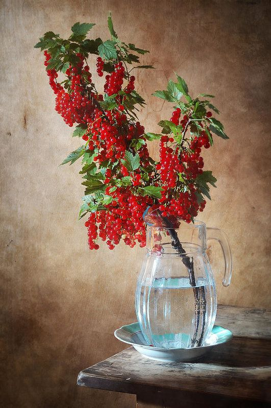 http://nikolay-panov.pixels.com/products/redcurrant-nikolay-panov-art-print.html • Fruit still life photography with big branch of red currant with fresh bright red berries in glass pitcher on wooden background in summer house: