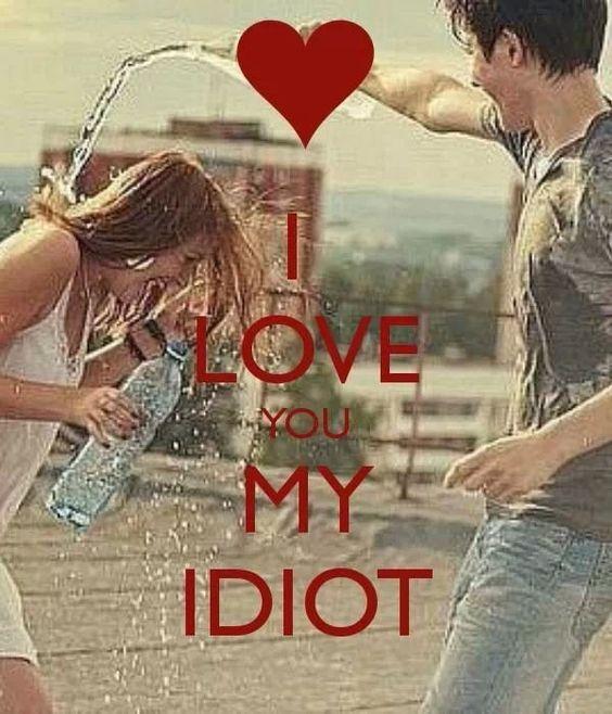 Idiot / lol