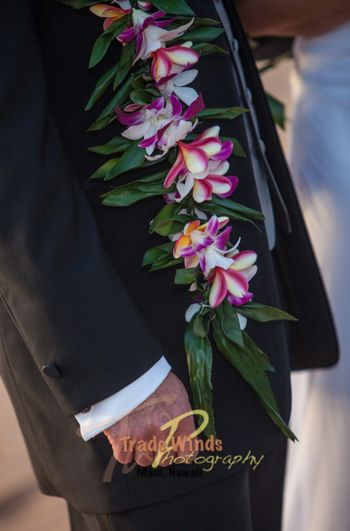 Maile Ti Lei with Orchid & Plumeria Wrap