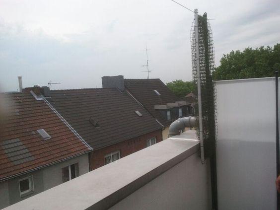 Konzept 43 Fur Katzennetz Balkon Unsichtbar Mit Bildern