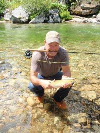 hal-herring