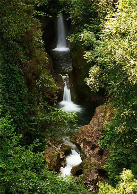 Río Saja    Cantabria   Spain: