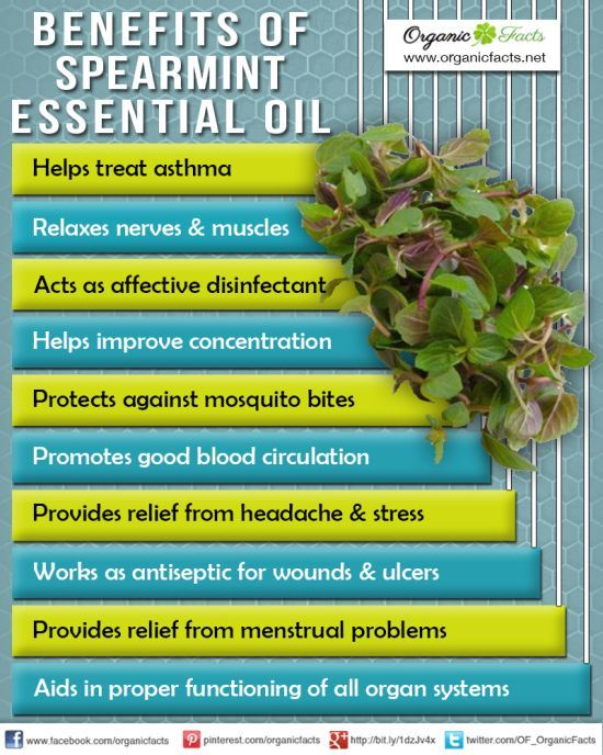 Spearmint Essential Oil! One of my favorites for aromatherapy and energy! Use my number to sign up for your wholesale Young Living account! Allison Ruggs 1525660