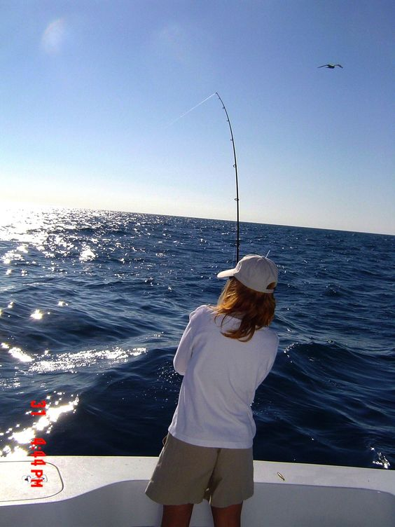 Deep sea fishing ft lauderdale deep sea deep sea for Deep sea fishing fort lauderdale