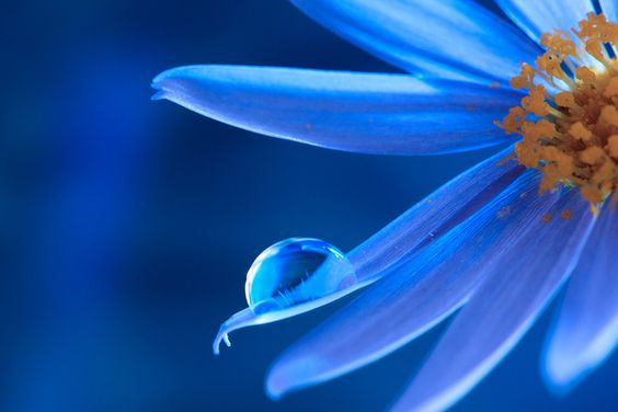 blue water drop by kiki_chi