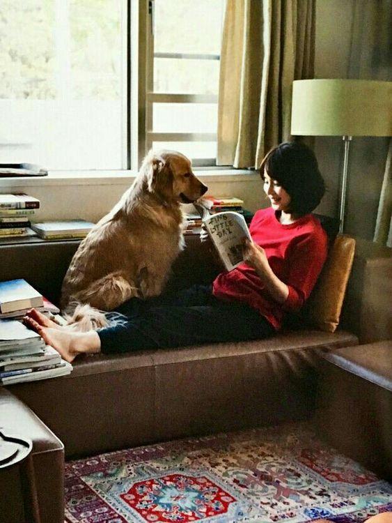 犬と石田ゆり子